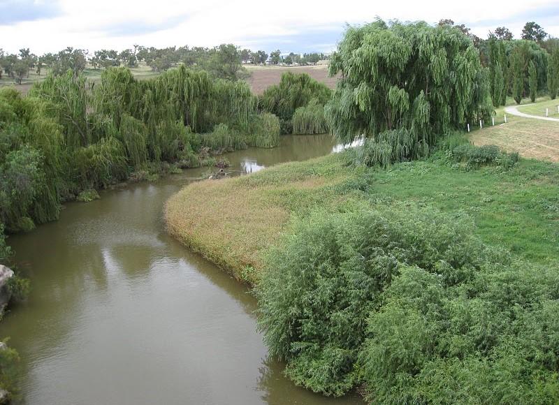 Merriwa-River-Rotary-Park-800x580