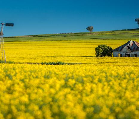 Left-in-Ruin-Merriwa-Upper-Hunter-Valley-Image-Credit-Aaron-Rusden-Photography